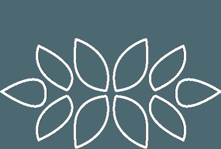 DevCognition